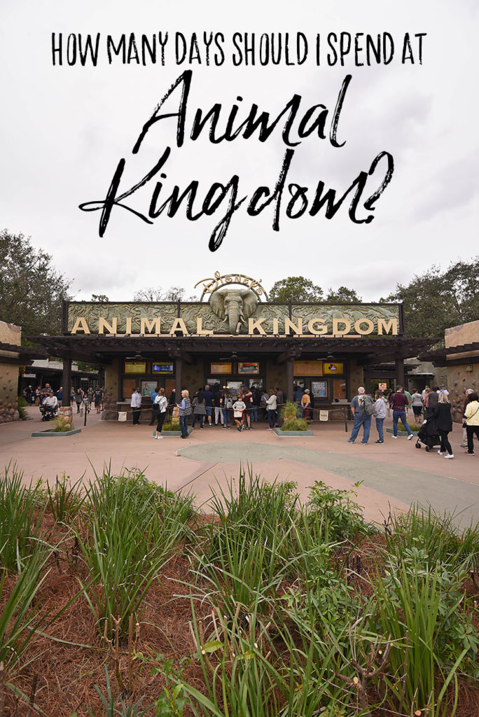 How Many Days Should I Spend at Animal Kingdom - Dream Plan Fly