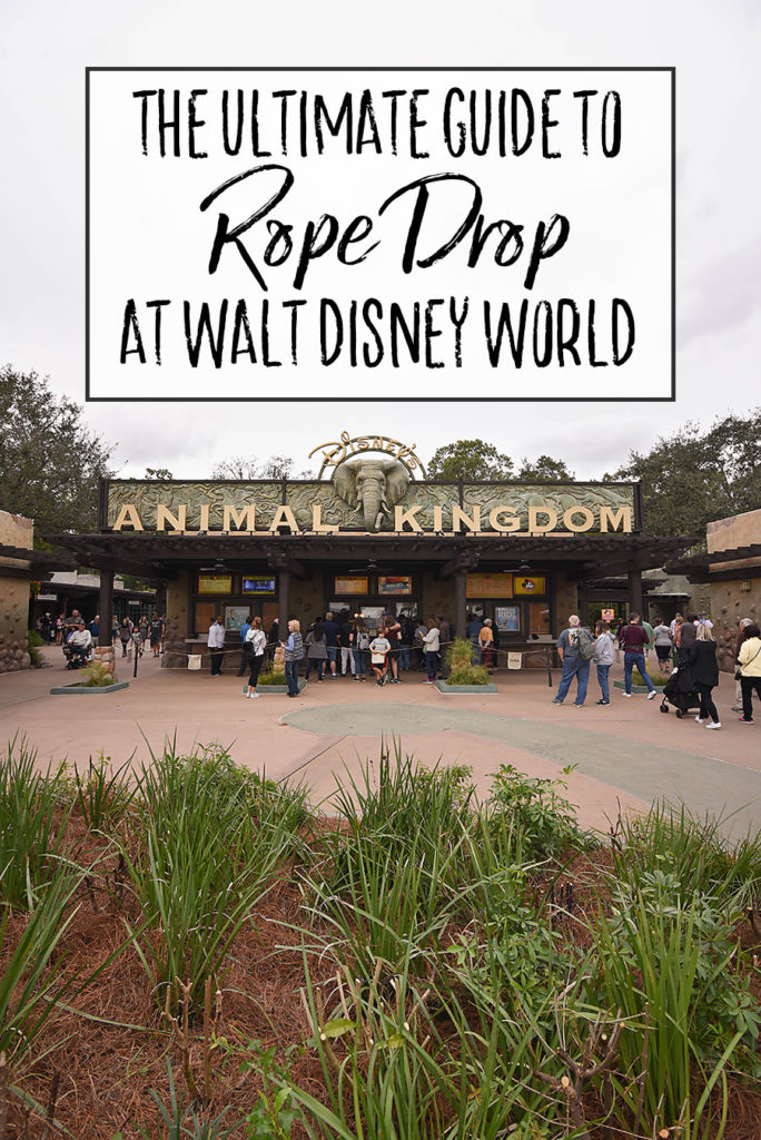 Ultimate Guide to Rope Drop at Walt Disney World - Dream Plan Fly