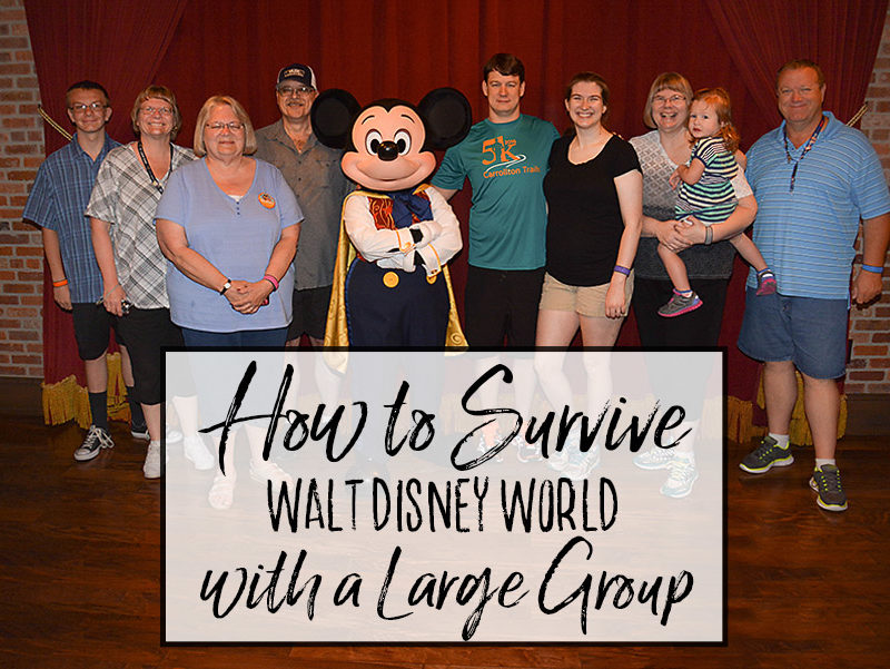 How to Survive Disney World with a Large Group
