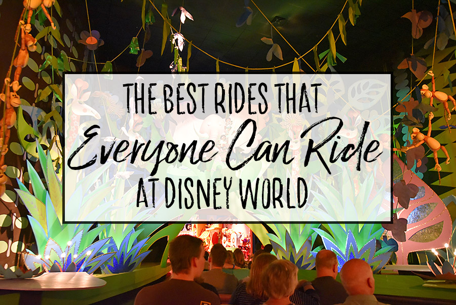 The Best Rides That Everyone Can Ride at Disney World - Dream Plan Fly