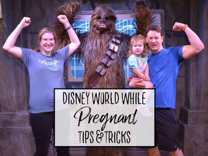 Pregnant at Walt Disney World – Tips and Tricks