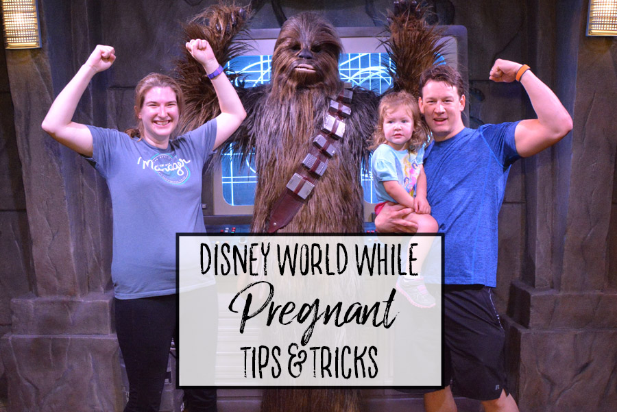 Pregnant at Walt Disney World - Tips and Tricks - Dream Plan Fly