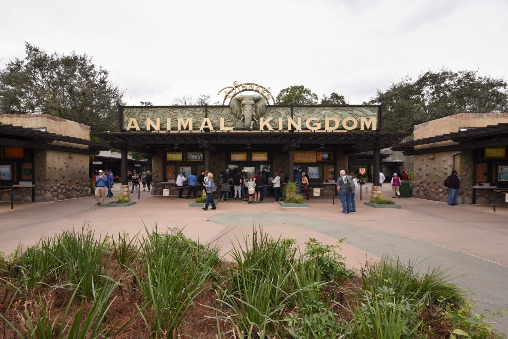 Animal Kingdom Entrance Area Walt Disney World - Tips to Save Time at Disney - Dream Plan Fly