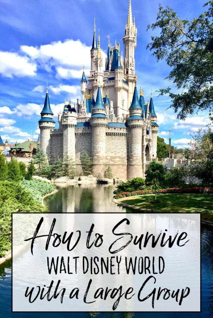 How to Survive Walt Disney World with a Large Group - Dream Plan Fly